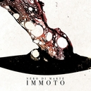 IMMOTO -DIGI-
