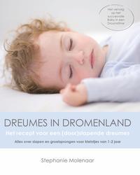 Dreumes in dromenland