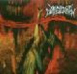 YEAR OF DESOLATION CATCHY MELODIC DEATH METAL & CLASSIC HEAVY METAL Audio CD, YEAR OF DESOLATION, CD