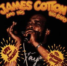 LIVE FROM CHICAGO! Audio CD, COTTON, JAMES -BAND-, CD