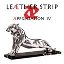 AEPPRECIATION IV -LTD-