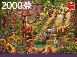 Premium Collection puzzel - Magic Forest at Sunset (2000 stukjes)