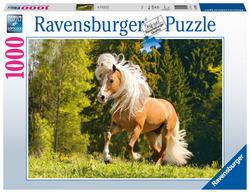 Vrolijk paard (1000 stukjes)