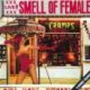 SMELL OF FEMALE + 3 TR. -LIVE-