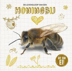 De levensloop van de honingbij