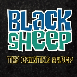 7-COUNTING SHEEP