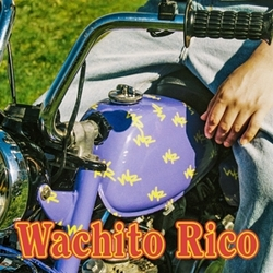 WACHITO RICO -COLOURED-...