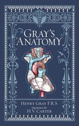 Gray's Anatomy (Barnes &...