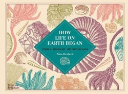 How Life on Earth Began