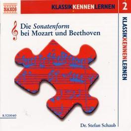 DIE SONATENFORM STEFAN SCHAUB, CD