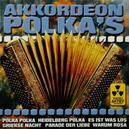 AKKORDEON POLKA'S...