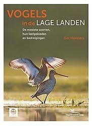 Vogels in de lage landen