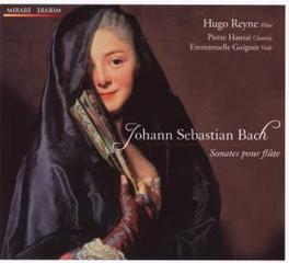 SONATES POUR FLUTE REYNE, GUIGUES, HANTAI Audio CD, J.S. BACH, CD