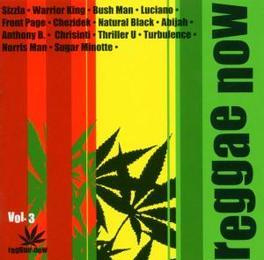 REGGAE NOW 3 DJ FLAVA/SIZZLA/LUCIANO/ANTHONY B/HALF P V/A, CD