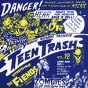 TEEN TRASH 12 ...FIENDS /...
