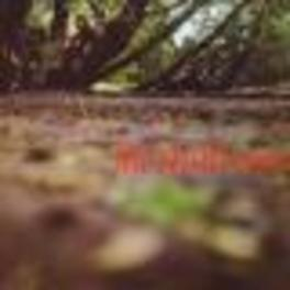 FAT MATTRESS EXPANDED EDITION, NOEL REDDING'S BAND Audio CD, FAT MATTRESS, CD