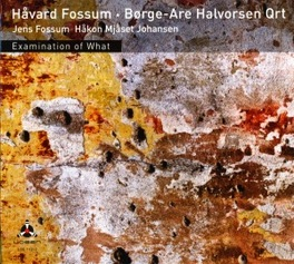 EXAMINATION OF WHAT W/BORGE-AGE HALVORSEN QUARTET HARVARD FOSSUM, CD