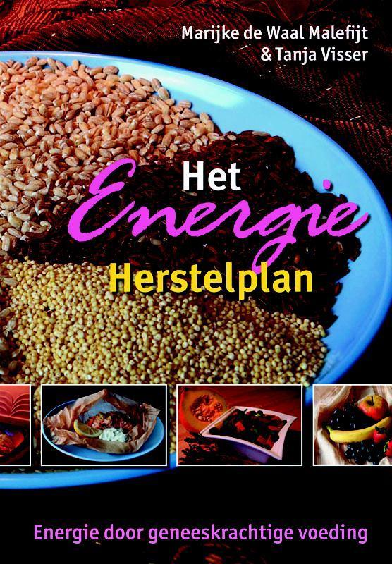 Het Energie Herstelplan energie door geneeskrachtige voeding, M. de Waal, Paperback