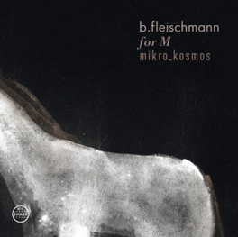 FOR M/MIKRO KOSMOS ON AND ON B.FLEISCHMANN, CD