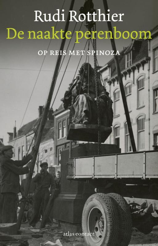De naakte perenboom op reis met Spinoza, Rotthier, Rudi, Paperback