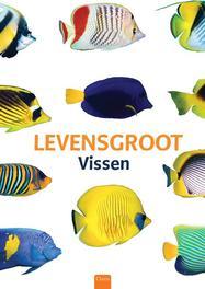 Levensgroot: Waterdieren vissen, Sakana-Kun, Hardcover