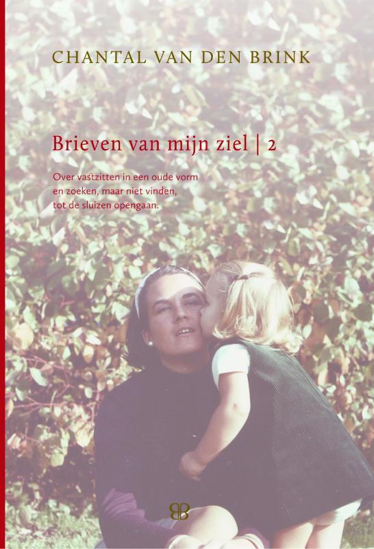 Brieven van mijn Ziel: 2 over vastzitten in een oude vorm en zoeken, maar niet vinden, tot de dam breekt 1999-2005, Chantal van den Brink, Hardcover