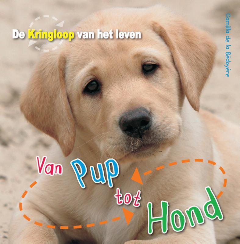 Van pup tot hond De Kringloop van het Leven, De la Bédoyère, Camilla, Hardcover