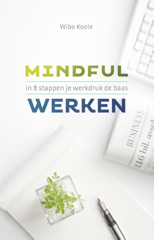 Mindful werken in 8 stappen je werkdruk de baas, Wibo Koole, Paperback