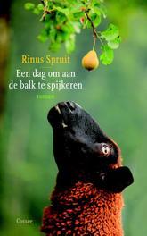 Een dag om aan de balk te spijkeren roman, Rinus Spruit, Paperback