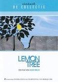 LEMON TREE NL