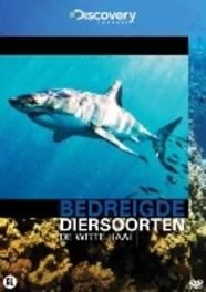 Bedreigde Diersoorten - De Witte Haai