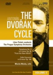 DvoraK Cycle 4