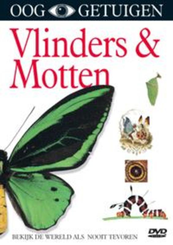 Ooggetuigen - Vlinders & Motten