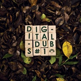 *1 BRAZILIAN ROOTS & DUB FT. RANKING JOE, DIGITALDUBS, Vinyl LP