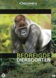 Bedreigde Diersoorten - De Gorilla