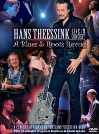 Hans Theessink - Live In Concert