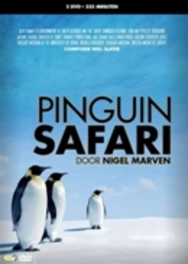 Peguin Safari