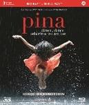 PINA -2D/3D-