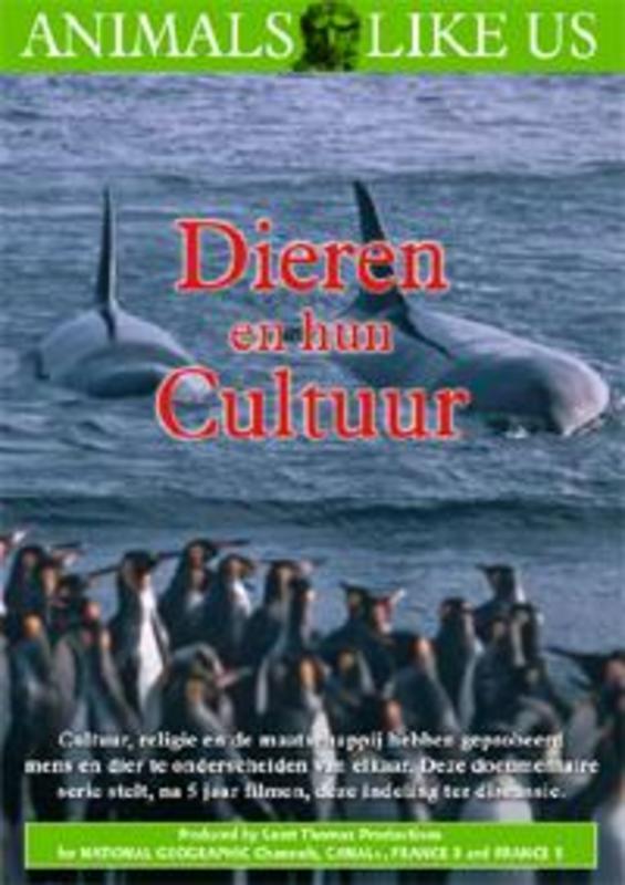 Dieren En Hun Cultuur