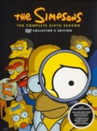 The Simpsons - Seizoen 6 (4DVD)