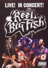 REEL BIG FISH LIVE! REEL BIG FISH, DVDNL