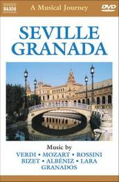 Seville: A Musical Journey