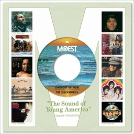COMPLETE MOTOWN SING. 12A ..12A/1972 // COMPLETE MOTOWN SINGLES VOL.12A//5CD + 7' V/A, CD