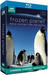 BBC Earth - Frozen planet more stories from the Arctic, (Blu-Ray) .. STORIES FROM THE ARCTIC TV SERIES/BBC EARTH, Blu-Ray