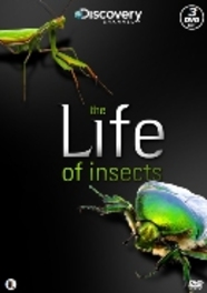 Life of insects, (DVD) PAL/REGION 2 DOCUMENTARY, DVDNL