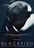 Blackfish, (DVD) PAL/REGION 2 // BY GABRIELA COWPERTHWAITE