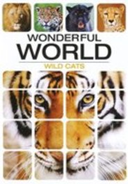 Wonderful World - Wild Cats