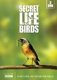 Secret life of birds, (DVD)