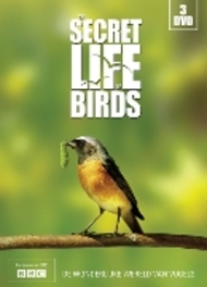 The Secret Life Of Birds (3DVD)