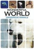 Wonderful world - Dangerous...